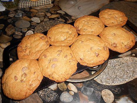 Baked Horrible Cookies